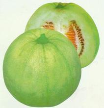甜瓜种子 甜瓜种子专卖 甜瓜种子价格