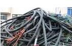 济南专业的电线电缆回收哪里有提供:山东电线电缆回收