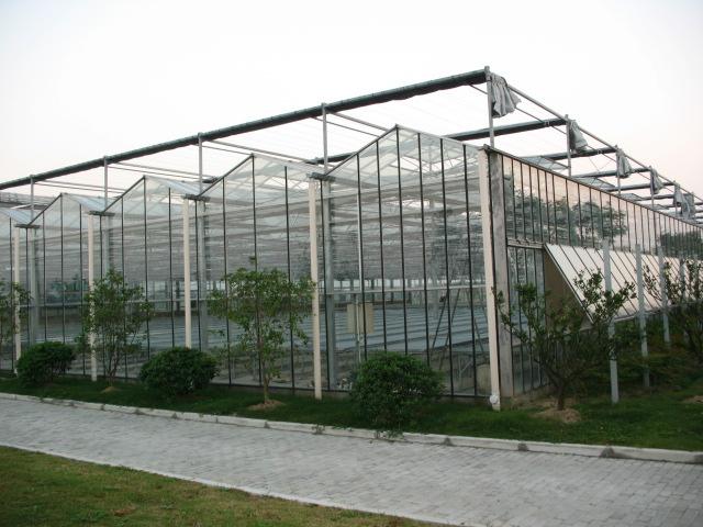 阳光板温室大棚公司推荐-长乐阳光板温室大棚