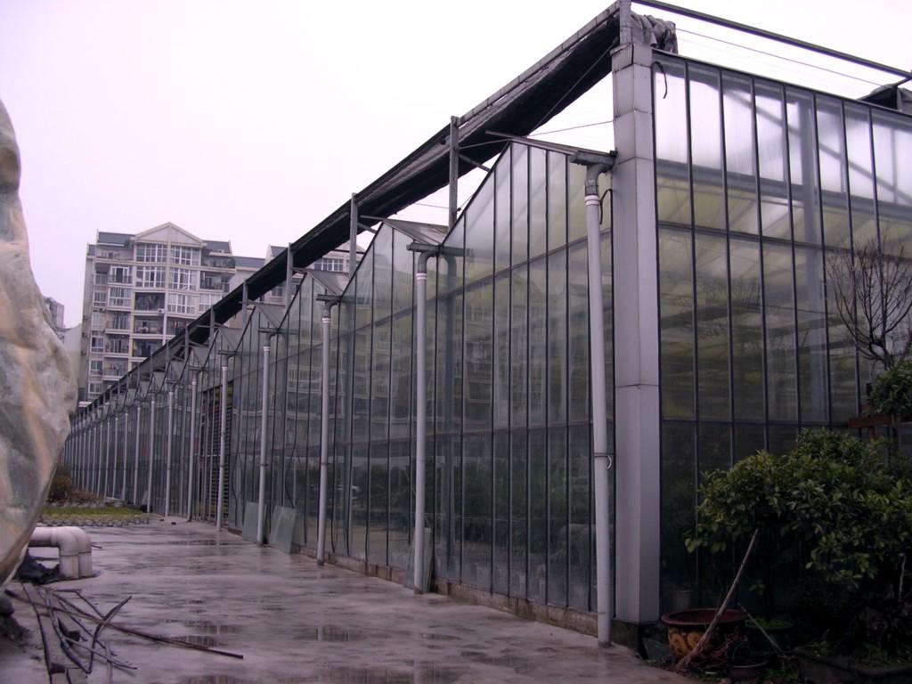 泉州阳光板温室大棚厂家|周宁温室大棚厂家