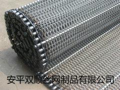衡水地区专业生产优良的链条输送带_安徽链条输送带