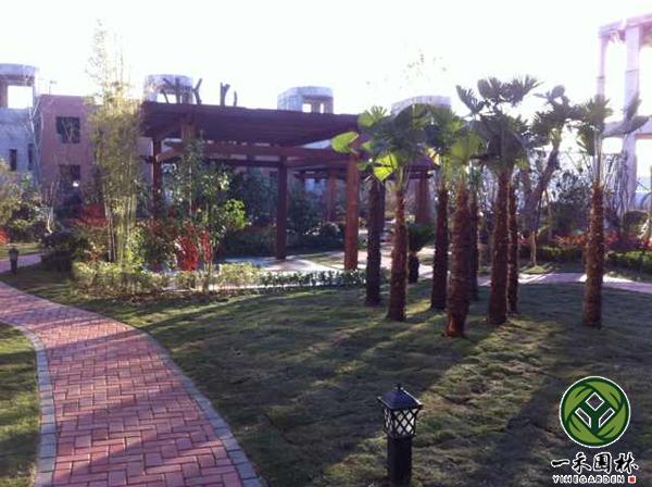 排屋别墅庭院景观设计