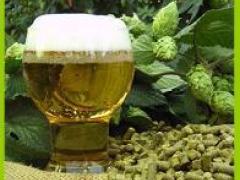 啤酒苦花厂家_济南高级的啤酒苦花批售
