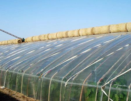 能够增产的蔬菜高温大棚