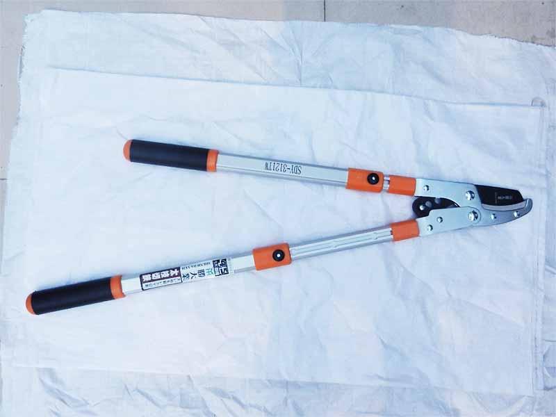 粗枝剪價格-興盛園林提供優惠的滕大業3121粗枝剪