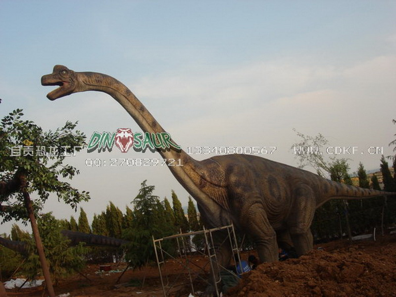 自贡口碑好的恐龙出租哪里有
