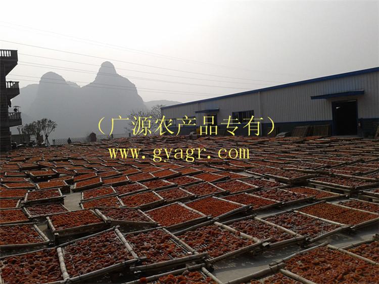 价格实惠的柿饼 供应桂林口碑好的桂林柿饼