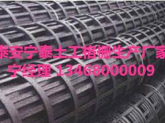 安徽【钢塑土工格栅厂家】规格齐全宁泰供应
