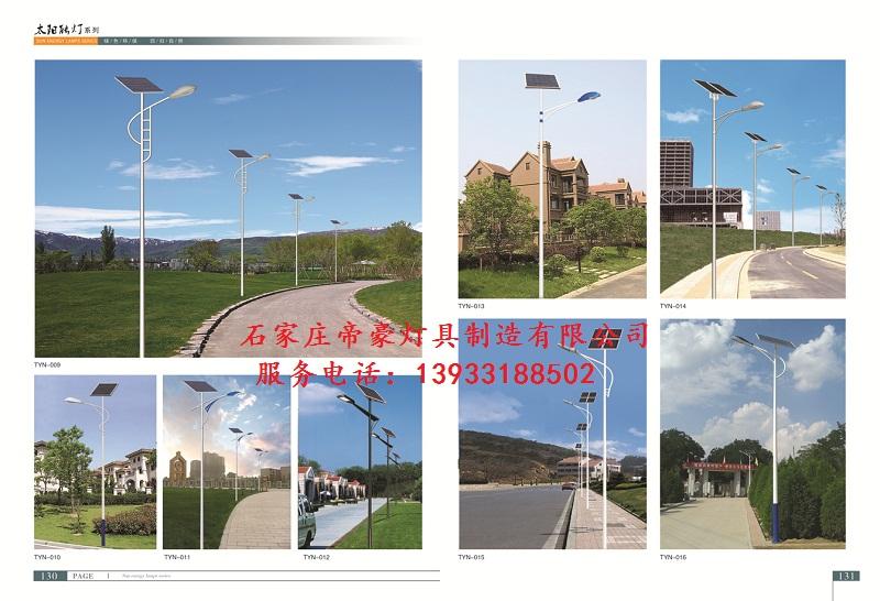 美丽乡村专用太阳能路灯,想买的太阳能路灯就来河北帝豪灯具公司