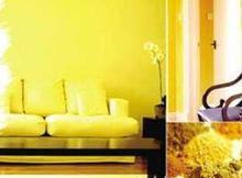环保漆哪家便宜-河南耐用的环保净味漆供应