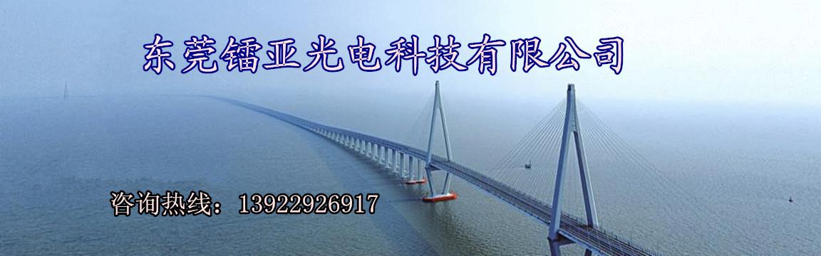 东莞镭亚光电科技有限公司