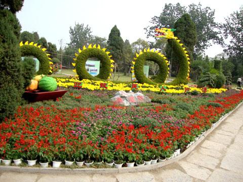河北立體花壇造型-山東哪里供應的立體花壇造型品質好