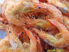 哪里有供应品质好的海产品:干海产品批售