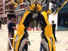 章丘市道夫模型供应同行产品中有品质的大黄蜂,济南大黄蜂