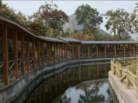 广西户外防腐木长廊定制找百年防腐木业