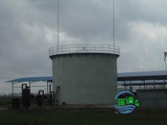邯郸沼气净化设备:有信誉度的沼气净化山东提供