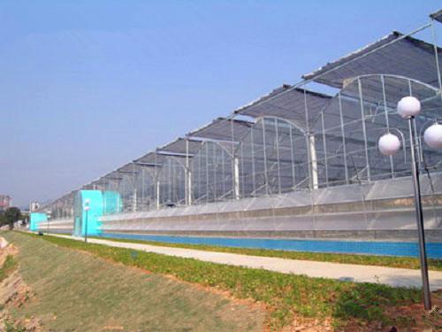 专业园艺温室-山东有品质的园艺温室建造公司