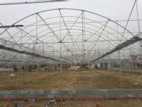 纹络温室建设-山东专业的纹络温室建造公司