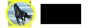 烟台骏马货运代理日博365体育在线_365体育官网 在线登录_365体育是真的吗
