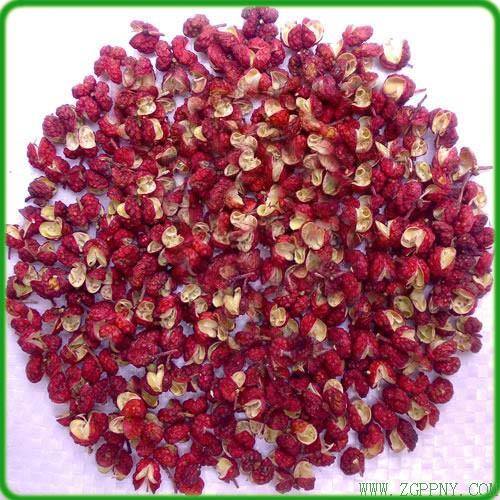 山东鲜花椒-俊豪红香椿供应实惠的花椒