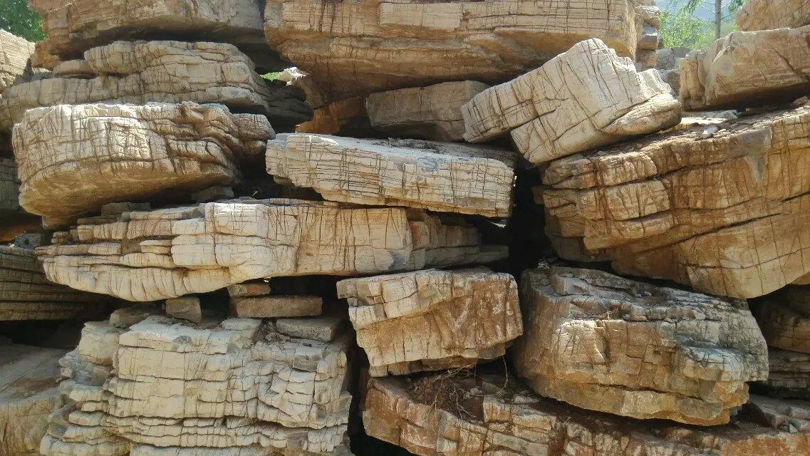 门牌石基地 山东太湖石提供的龟纹石好不好