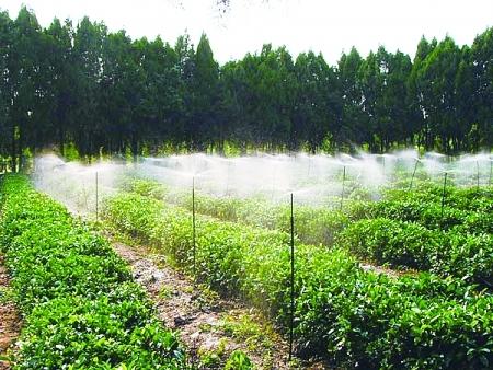 园林灌溉用品