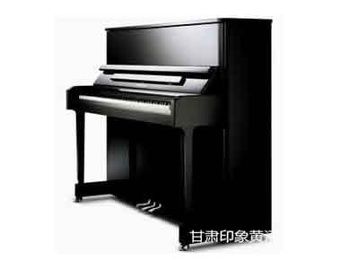 宁夏钢琴销售-可信赖的斯坦伯格钢琴公司
