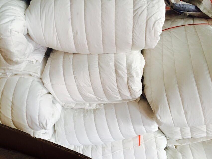 批发太空棉-晓雪棉被提供有品质的太空棉产品