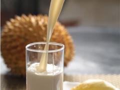 榴莲王子餐饮管理供应价格优惠的榴莲牛奶:榴莲奶昔加盟条件