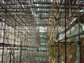 漳州钢管架租赁_高质量的钢管架找哪家