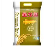 金龙鱼大米供应|品质好的金龙鱼大米推荐