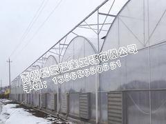 智能连栋温室建造|连栋温室大棚建造技术|智能连栋温室造价