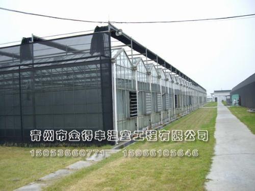 玻璃连栋温室建设,专业花卉温室建设,玻璃板温室造价
