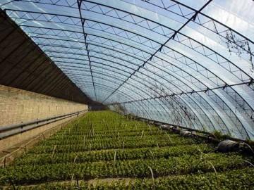 领先的河北双防膜厂家就是科伦塑料 专业加工农用双防膜