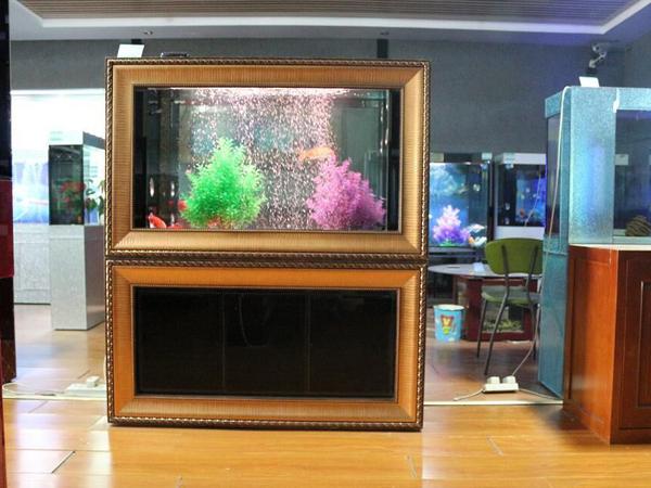 专业的生态鱼缸,亿燕水族供应】是由【莱芜亿燕水族景观制作有限公司
