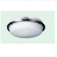 怎样才能买到划算的CPD2-1双泡蓬顶灯 CPD2-1双泡蓬顶灯供应厂家