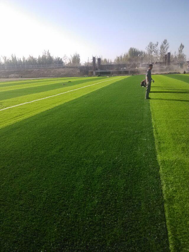 南宁人造草坪品牌推荐-哪里能买到划算的人造草坪