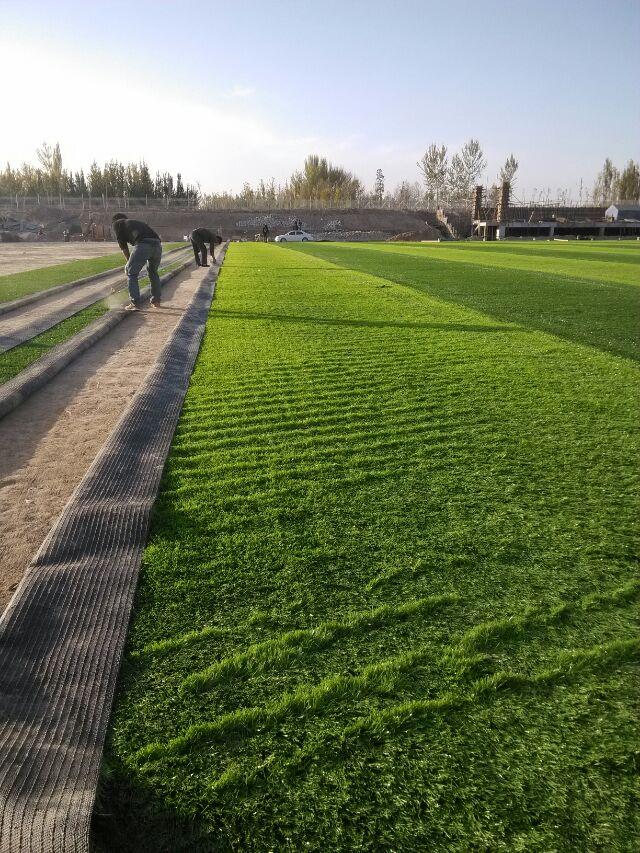 南宁人造草坪门球场品牌推荐-广西专业的人造草坪供应