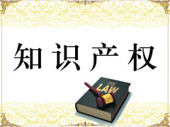 济南知识产权纠纷公司,知识产权纠纷律师