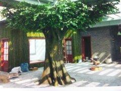 河北假树厂家 玻璃钢假树批发 假树制作