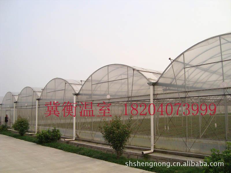 连栋温室安装-辽宁专业的连栋大棚