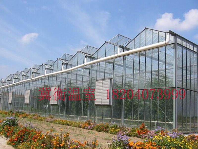 温室大棚厂家-好用的温室大棚推荐