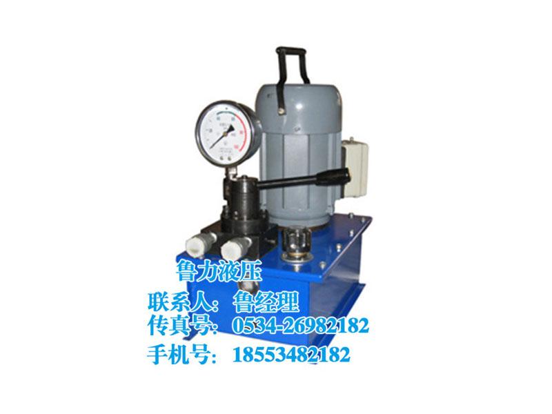 鲁力供应质量较好的DBS电动泵_径向泵供应商