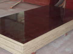 泰安宏泰竹胶板厂提供的建筑竹胶板价钱怎么样 桥梁竹胶板厂家