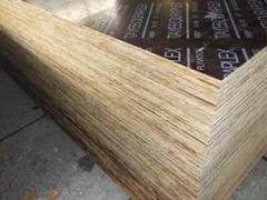 泰安宏泰竹胶板厂信誉好的包装板销售商——实惠的包装板