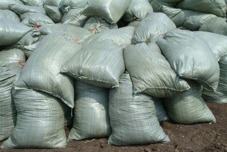 营养土营养土批发草炭土供应