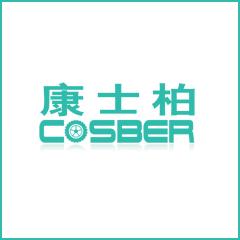 深圳市康士柏实业有限公司