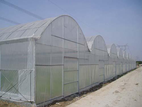新疆连栋薄膜温室建设|安徽薄膜连栋温室建设|薄膜连栋温室承建