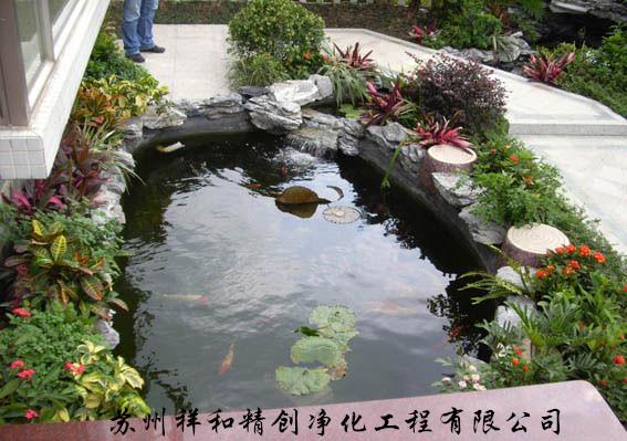 金华市绿藻别墅水发绿,青苔鱼池,清除养鱼池中城别墅翠屏图片
