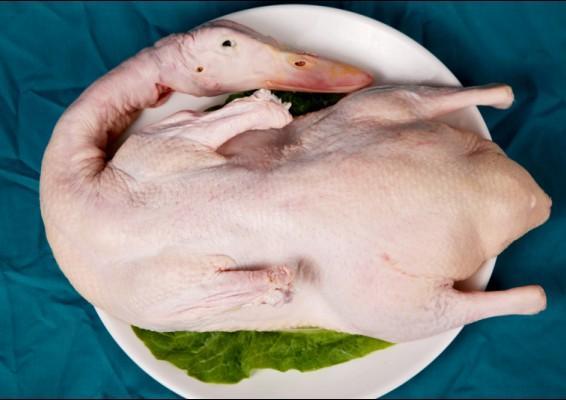一甲食品白条鸭 樱桃谷瘦肉型冻鲜鸭  全国各地批发